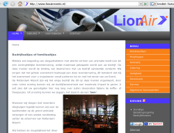 Lionairevents design