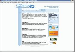 Metazoek design